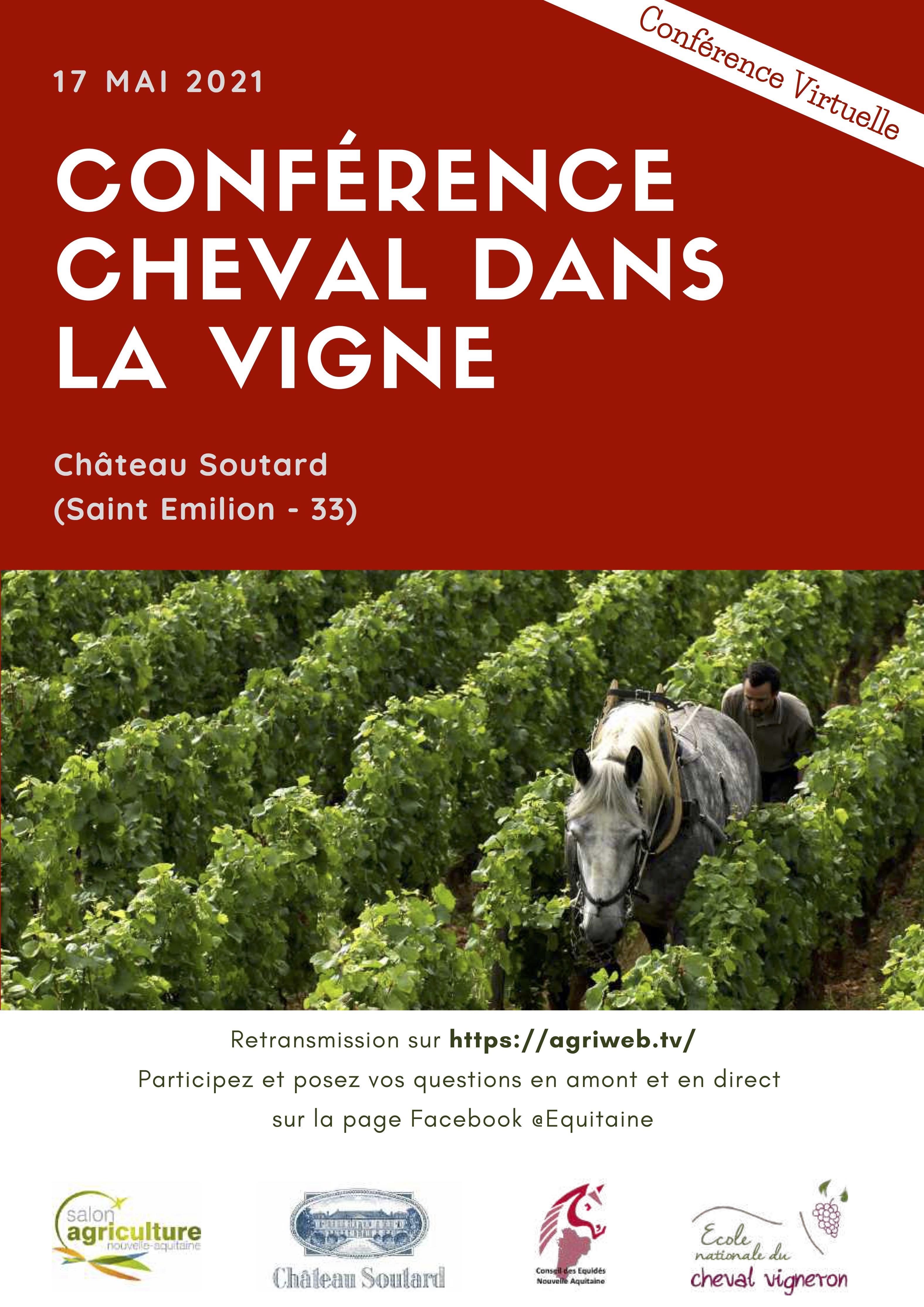 Conférence Cheval dans la Vigne
