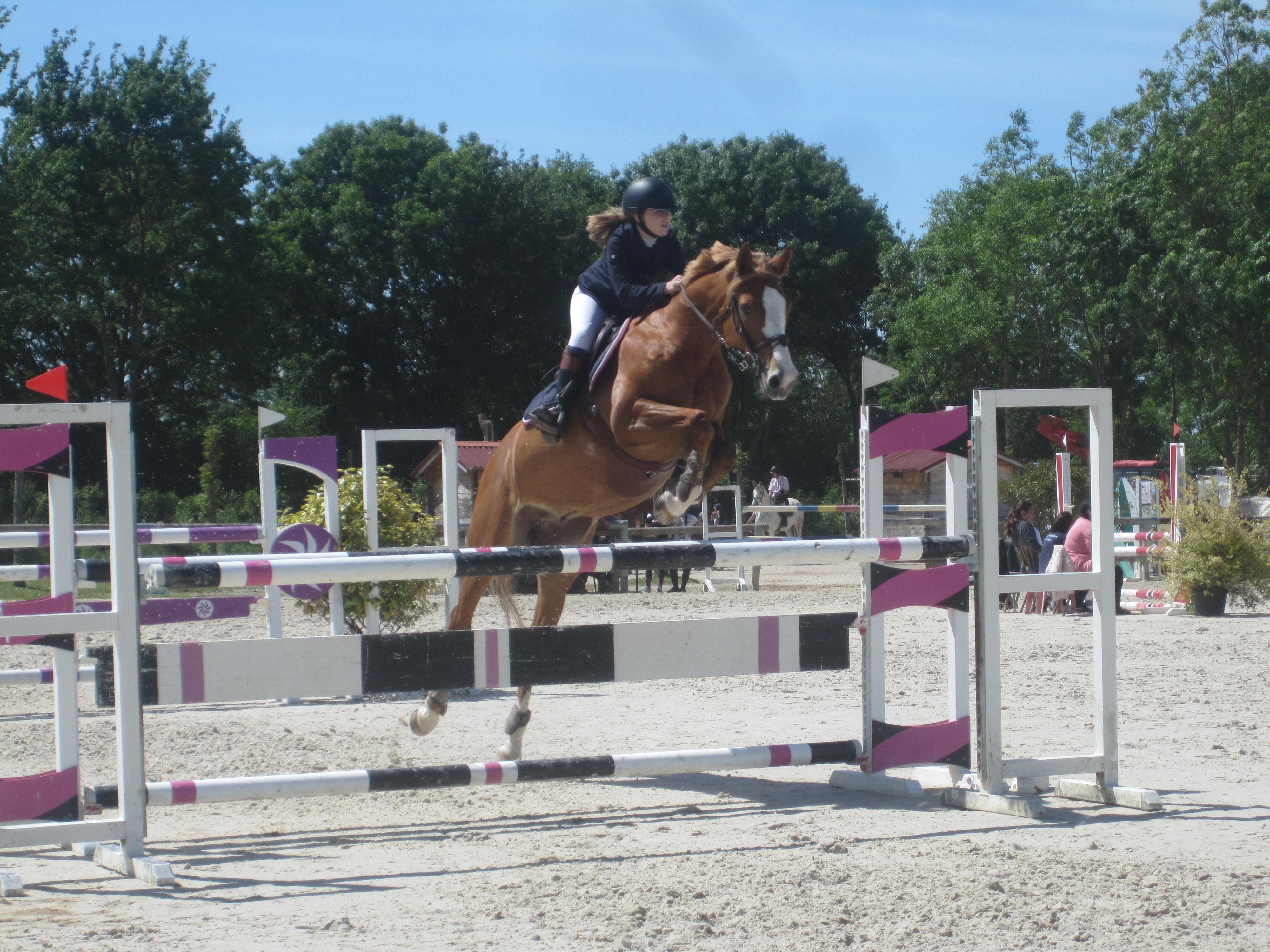 Enquête Pratique des cavaliers dans les centres équestres